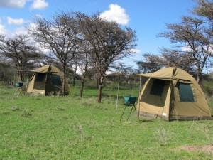 Dome Tents in the Serengeti