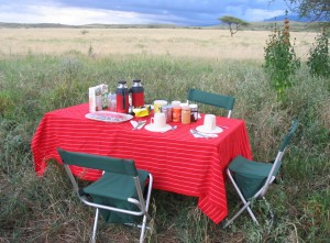 Breakfast al fresco in Tanzania