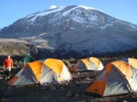 Tents on Mt. Kilimanjaro Uhuru Peak in the background