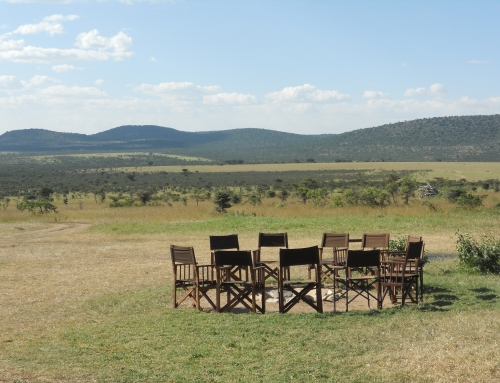Scheduled Small Group Safaris 2016