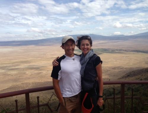 Praise from a safari traveller
