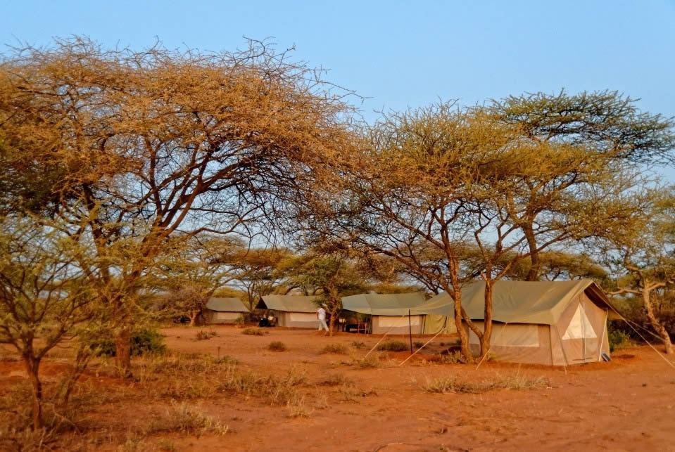 Longido Tents