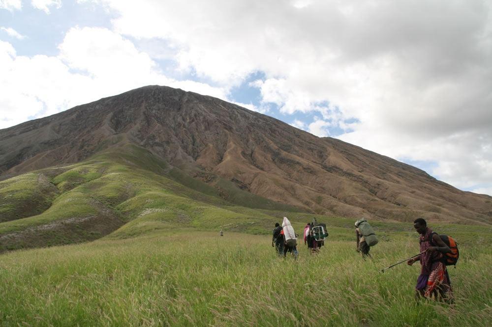 Nature Discovery Kilimanjaro Reviews